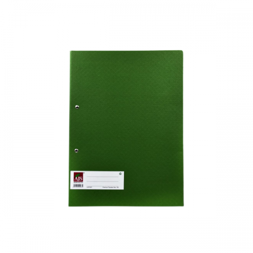 AJS Lyon Flat Spring Clip Premium Transfer File Pack of 1 PCs_Green Front_carttray